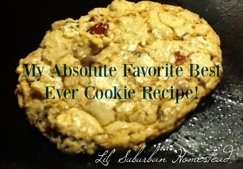 my absolute favorite best ever cookie recipe