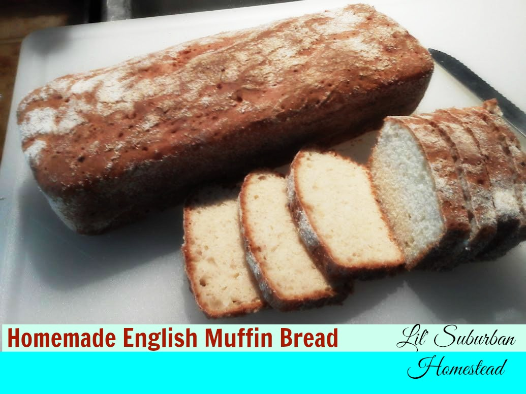 homemade english muffin bread lil' suburban homestead
