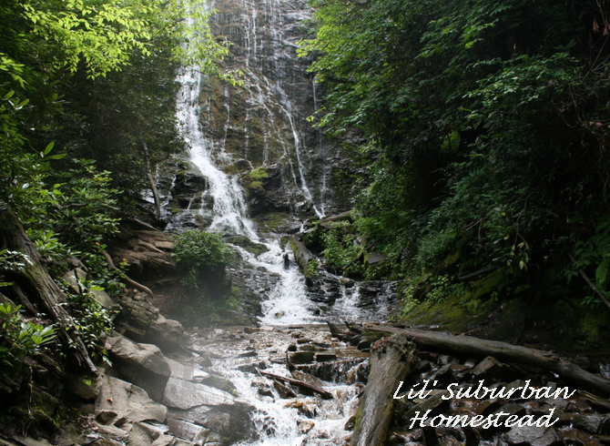 a picture of mingo falls, cherokee, nc