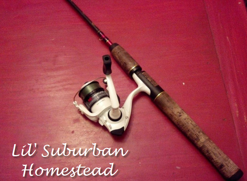 re-purposed fishing rod