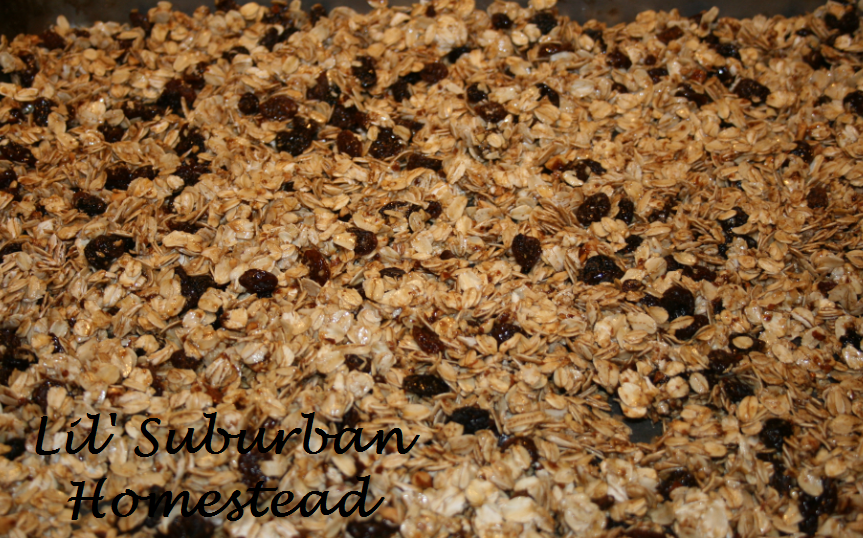 LSH Basic Granola Recipe