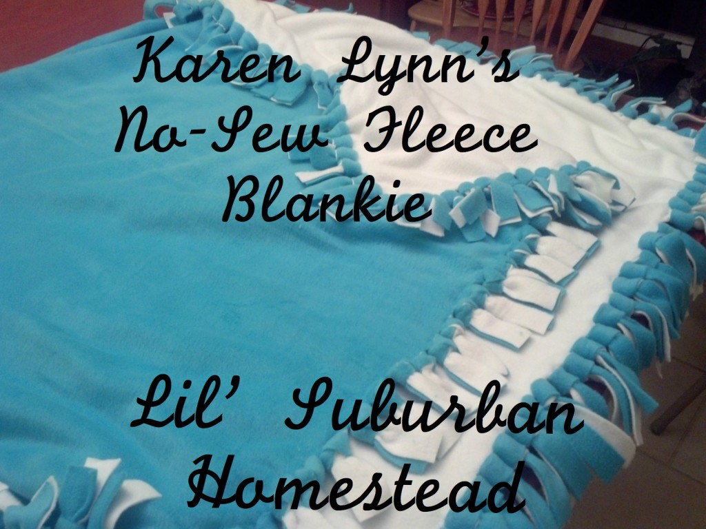 Karen Lynn's No Sew Fleece Blankie