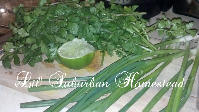 green onions, cilantro, and lime