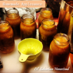 homemade applesauce at Lil' Suburban Homestead
