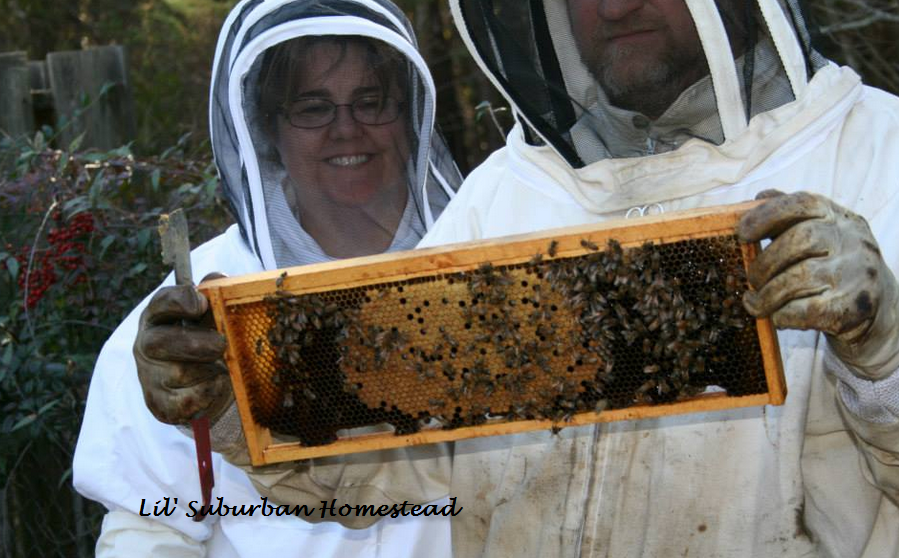 Beekeeping is a fun and rewarding hobby!
