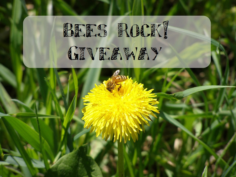 bees rock giveaway from runamuk acres