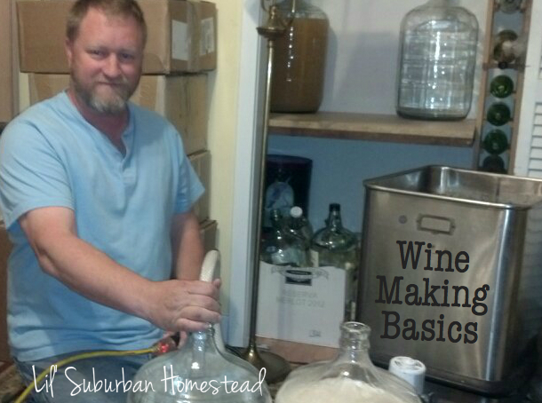 wine making basics
