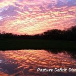 pasture deficit disorder