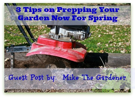 guest post from mike the gardener