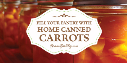 canned-carrots-growagoodlife
