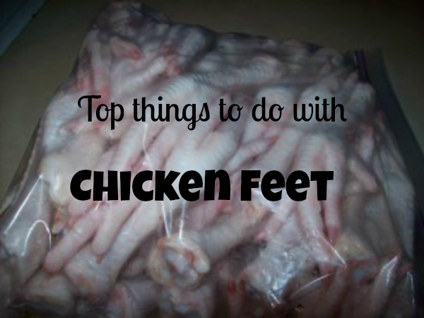 top-things-to-do-with-chicken-feet