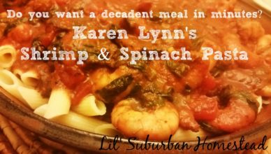 karen lynns shrimp and spinach pasta