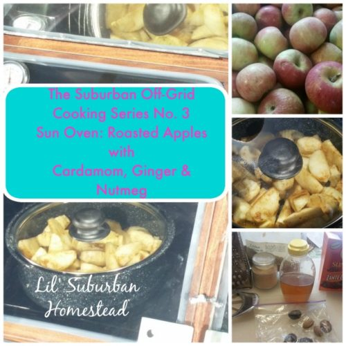 lil suburban homestead off grid series cooking no. 3