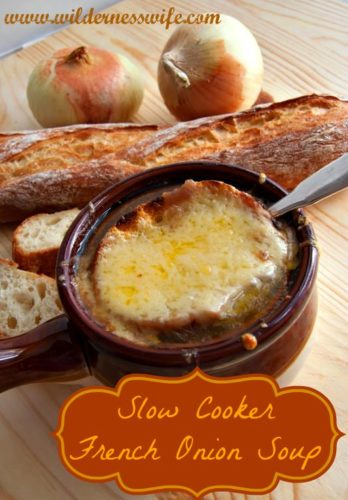 the wilderness wife slow cooker french onion soup
