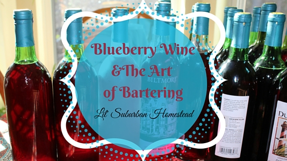 lil suburban homestead blueberry wine and the art of bartering
