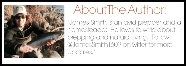 about the author james smith