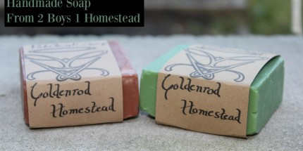 soap review 2 boys 1 homestead