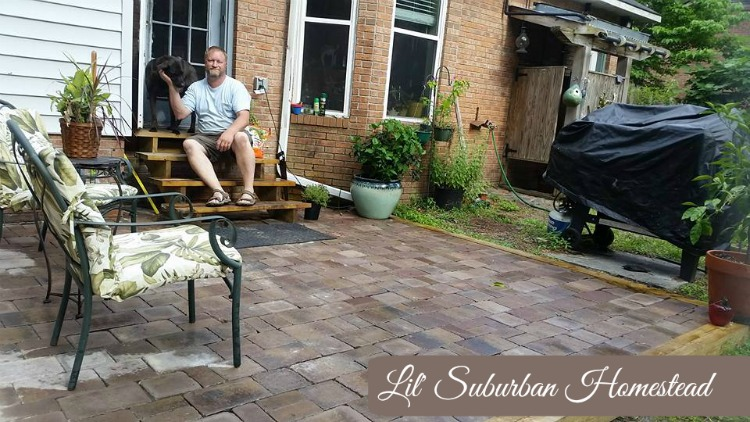 Patio progress at Lil' Suburban Homestead