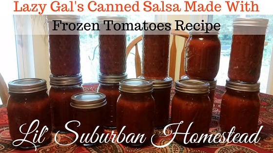Lazy Gal's Salsa Recipe