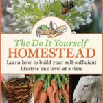 The Do It Yourself Homestead