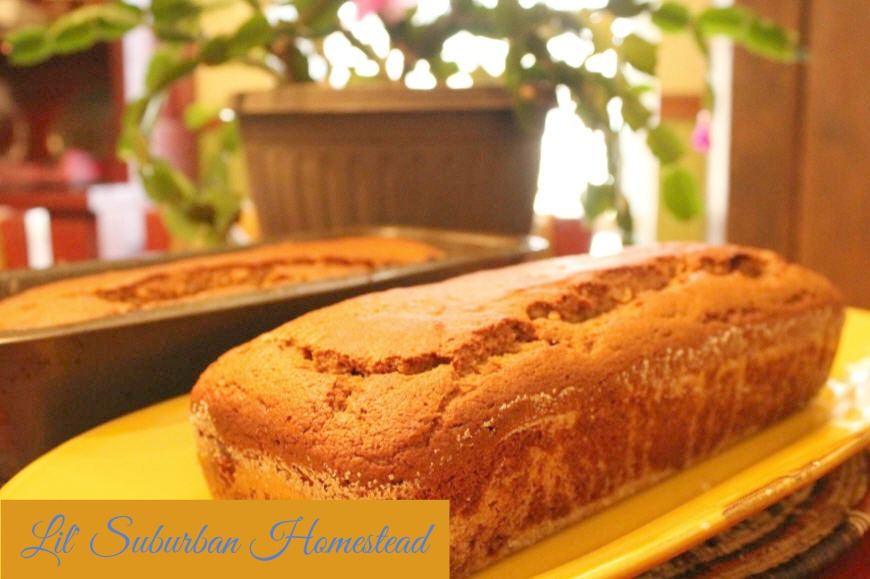 Cranberry Orange Persimmon Bread