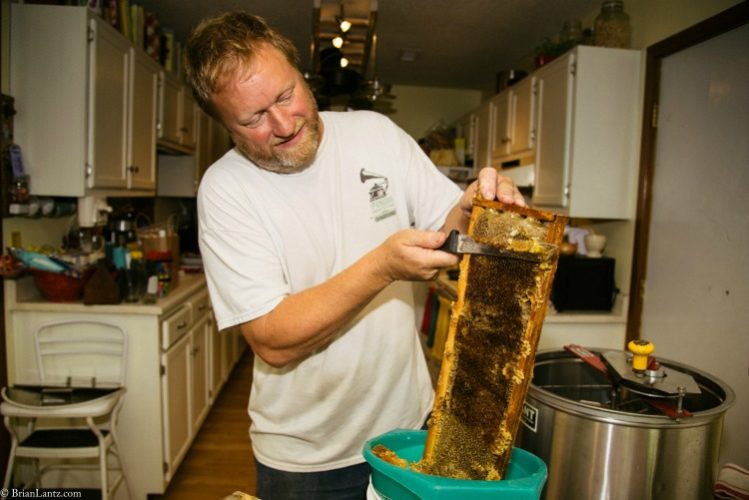 My husband uncapping the honey comb