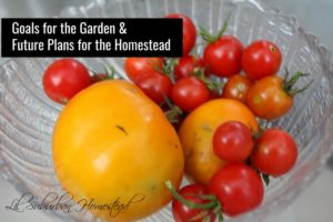 Title Garden goals & future plans for the homestead Caption Alt Text Description ATTACHMENT DISPLAY SETTINGS Alignment Link To http://www.lilsuburbanhomestead.com/wp-content/uploads/2017/10/goalsforgardenmain.jpg Size 1 selected Clear Insert into post Choose Files