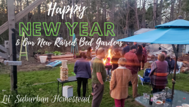 Happy New Year & Our Raised Bed Gardens